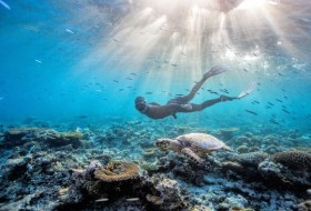 freediving-Australia-2