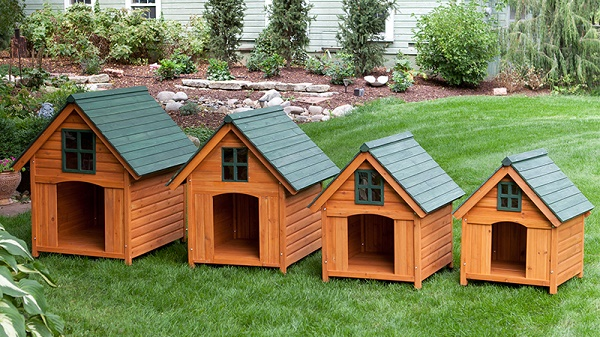 Choosing a Dog House That Meets All of the Requirements