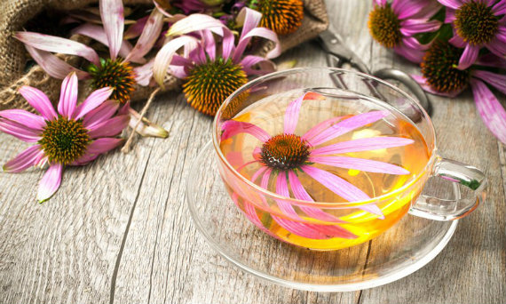 echinacea tablets 5