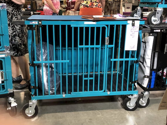 blue show trolley