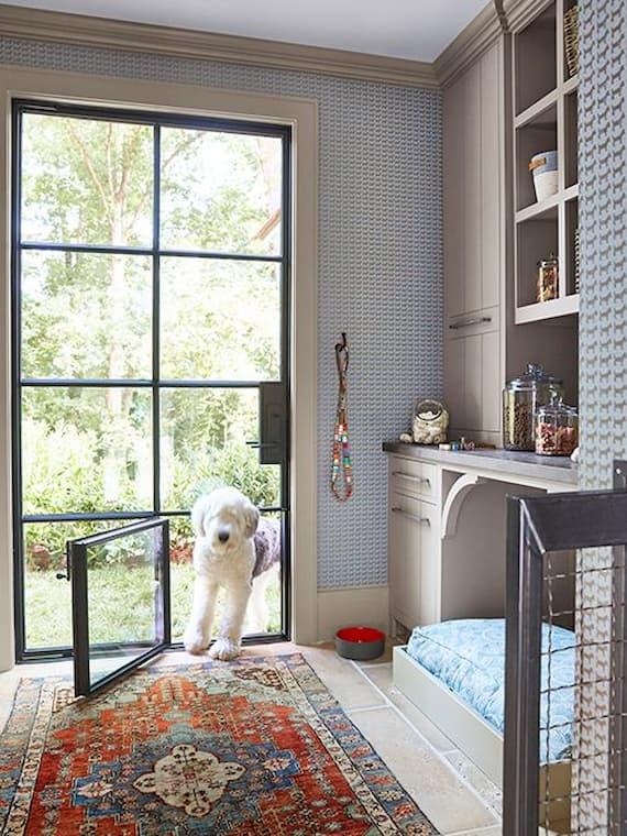 fluffy dog going trough a glass dog door